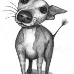 doggy5